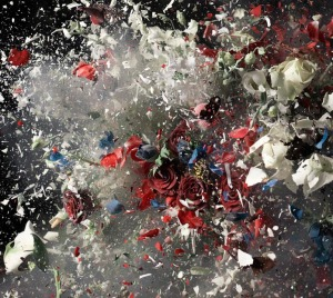 Ori Gersht Blow Up Detail