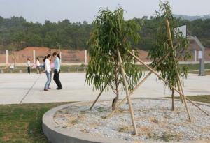 Chu Yun Love - a project created for Siemens