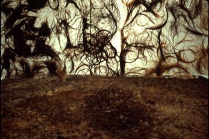 Wenda Gu, untitled installation, multi-racial human hair 1994-5