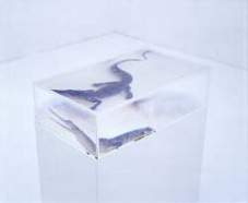Kohei Nawa, PixCell Crocodile, mixed media, 2004