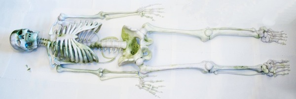 He Xiangyu, Skeleton no. 1, 2009 125 x 80 cm