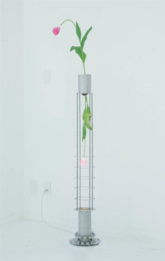 Kiichiro Adachi, 'Antigravity Device', 2009, Tulip, soil,neodymium magnet, stainless steel, halogen light