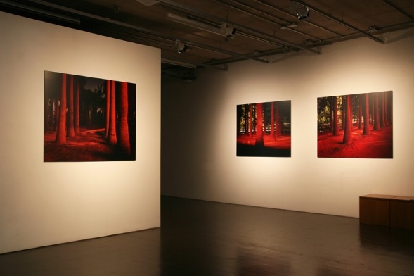 Yesterday is History, Tomorrow is Mystery, 2010 Installation view at QUAD, Derby, UK. Courtesy of artist